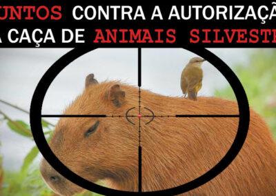 Campanha Change - Contra a caça