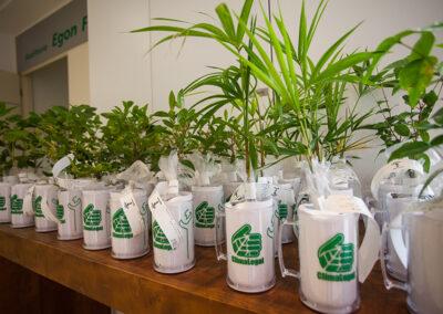 A Apremavi ofertou aos participantes do Fórum de Gestão Sustentável 2017 mudas de espécies como pitanga, palmito, entre outras que são produzidas no projeto Viveiro das Florestas. Foto: Marcos Campos.
