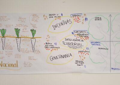 Sistematização dos grupos de trabalho. Foto: Carolina Schäffer.