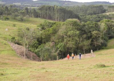 Recuperação de áreas degradadas e conservação de remanescentes florestais. Foto: Marcos Alexandre Danieli.