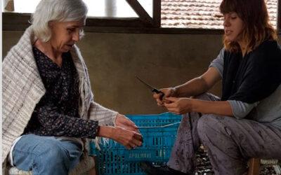 Veja como foi o trabalho voluntário que Nara Guichon e Natália Seeger fizeram na Apremavi